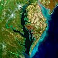 Chesapeake Bay by Elaine Plesser