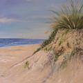 Chesapeake Bay Dune by Barbara Harper
