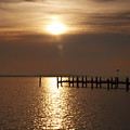Chesapeake Morning by Bill Cannon