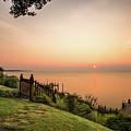 Chesapeake Morning by Walt Baker
