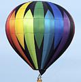 Chester County Balloon Fest 31 by Terri Winkler