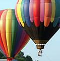 Chester County Balloon Fest 8765 by Terri Winkler