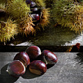 Chestnuts 01 by Edgar Laureano
