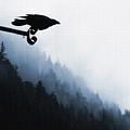 Chevron Raven by Perri Kelly