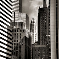 Chicago Architecture - 13 by Ely Arsha