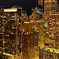 Chicago At Night by Joni Eskridge