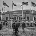 Chicago Bears Soldier Field Black White 7861 by David Haskett II