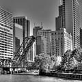 Chicago Bridges by Jim Cole