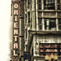 Chicago In November Oriental Theater Signage Vertical by Thomas Woolworth