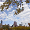 Chicago Skyline And Fall Colors by Sven Brogren