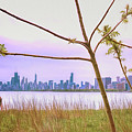 Chicago Skyline - The View From Montrose Point by Wes Iversen
