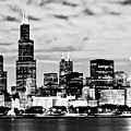 Chicago Skyline At Night by Paul Velgos