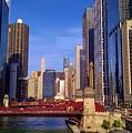 Chicago Skyline by Rosanne Licciardi