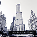 Chicago Trump Tower And Wrigley Building by Paul Velgos