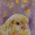 Chick by Michael Creese