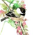 Chickadee And Spring Blossom by Suren Nersisyan