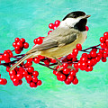 Chickadee And Winterberry by Laura D Young