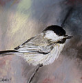 Chickadee by Cathy Weaver