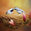 Chickadee Lunch by Ericamaxine Price