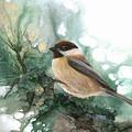 Chickadee by Sherry Shipley