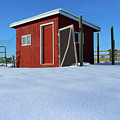 Chicken Coop In Snow Covered Field by Travers Morgan