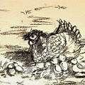 Chicken Family  by Hae Kim