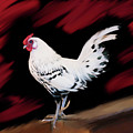 Chicken Number One by Lisa Redfern
