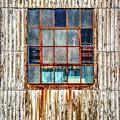 Chicken Wire Window by Robert Anastasi