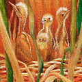 Chicks In The Reeds by Ruth Canada
