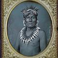 Chief Kno-shr by S Paul Sahm