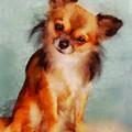Chihuahua by Esoterica Art Agency