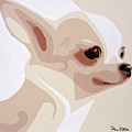 Chihuahua by Slade Roberts
