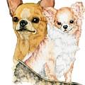 Chihuahuas by Kathleen Sepulveda