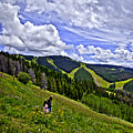Children On Vail Mountain by Madeline Ellis