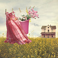 Child's Dress And Toys Hanging On Line With Farmhouse In Backgro by Sandra Cunningham