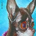 Chili Chihuahua by Minaz Jantz