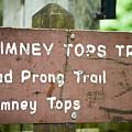 Chimney Tops Trail by Christi Kraft