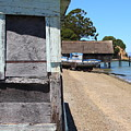 China Camp In Marin Ca - Vertical by Wingsdomain Art and Photography