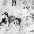 China: Dogs by Granger