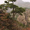 China, Mt. Huangshan by Larry Dale Gordon - Printscapes