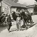 China: Peking, 1901 by Granger