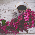Chinaberry Blossoms And Coffee Cup by Anna Louise