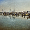 Chincoteague Bay by Tom Gari Gallery-Three-Photography