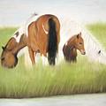 Chincoteague Ponies by Jan Brown Caraway