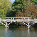 Chinese Bridge Over The River by F Helm