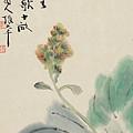 Chinese Cabbage by Zhang Daqian