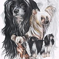 Chinese Crested And Powderpuff W/ghost by Barbara Keith