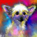 Chinese Crested Dog Puppy Painting Print by Svetlana Novikova
