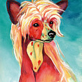 Chinese Crested Sunset by Kathleen Sepulveda
