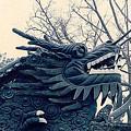 Chinese Dragon by Maro Kentros